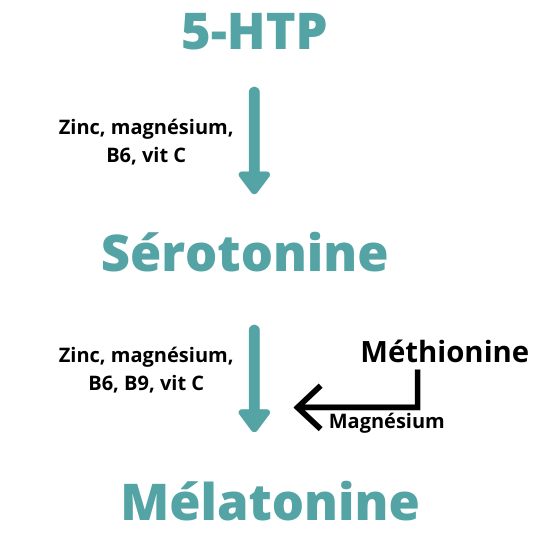s_1F7C8A6223FBAF06D57AE10928FA009E7BBA0864CEC4BF61301AF14530FCA061_1614898300863_Serotonine+1.png